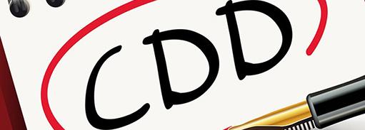cdd-actu